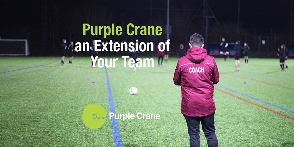 Purple Crane - an Extension of Your Team